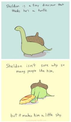 Sheldon the turtle and shyness. Sheldon the turtle is so cute! Even though he's really a tiny dinosaur!