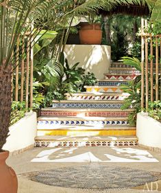 Steps with tiles in the garden