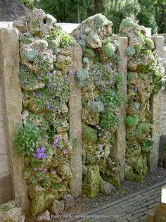 Tufa Wall & Tufa Column - Harry Jans Rockery Garden, Fenced Vegetable Garden, Vertical Vegetable Gardens, Indoor Vegetable Gardening, Garden Planters, Succulents Garden, Garden Art, Garden Landscaping, Garden Design