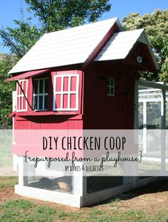 DIY chicken coop rep