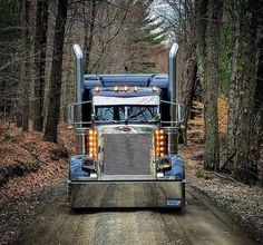 Keep on Truckin' Custom Peterbilt Conventional with Chicken Lights and Chrome
