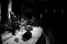 Quinteto (Ensamble) Soledad Bélgica Concert, Loneliness, Concerts