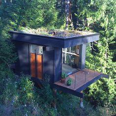 Bem Legaus!: Cubo florestal