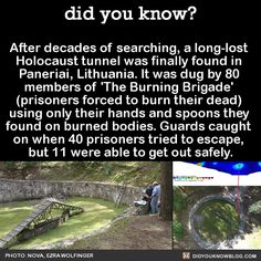 After decades of searching, a long-lost Holocaust tunnel was finally found in Paneriai, Lithuania. It was dug by 80 members of 'The Burning Brigade' (prisoners forced to burn their dead) using only their hands and spoons they found on burned bodies. Wow Facts, Wtf Fun Facts, Crazy Facts, Random Facts, The More You Know, Good To Know, Did You Know, Interesting History, Interesting Facts