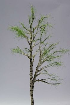 Model Tree, Scale Models, Wire, Craft Ideas, Crafts, Bonsai Trees, Holiday Ornaments, Dioramas, Paintings