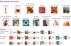 Causes of Cancer - FREEORBIT