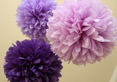 Google Image Result for http://www.wedding-inspiration.com/wp-content/uploads/2010/11/purple-party-poms.jpg