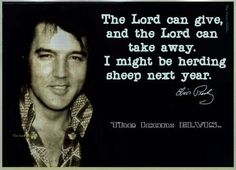 i might be herding sheep