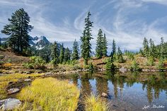 Fall comes early to the high peaks and meadows of the Cascade Range.  While the Puget Sound country is still enjoying the last heat of summer, the mountains are taking on the hues of autumn.  This scene of an alpine pond and meadow turning color was taken near Snow Lake in the Alpine Lakes Wilderness, Washington State, USA.