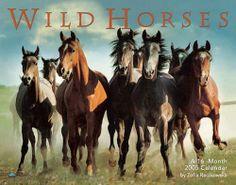 Wild horses could drag me away...http://www.google.com/imgres?q=pictures+of+horses&hl=en&client=firefox-a&hs=M1b&sa=X&rls=org.mozilla:en-US:official&biw=1280&bih=577&tbm=isch&prmd=imvns&tbnid=cHVprhuAzFLPCM:&imgrefurl=http://www.best-horse-photos.com/Wild-Horses.html&docid=DXQY-lk5Dd1AaM&imgurl=http://www.best-horse-photos.com/images/Calendar_Wild_Horses.jpg&w=500&h=393&ei=DK0UT_5TiImyAt6u_csD&zoom=1