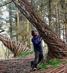 In het bos van de Floriade 2012 woont een bijzondere man genaamd Will Beckers. Zijn bijnaam is de Willowman en die naam doet hij eer aan. Samen met jonge bezoekers van de Floriade maakt hij onder andere kunstwerken van wilgentenen.