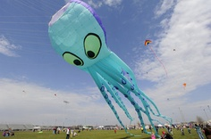Community Kite Festival photos and video