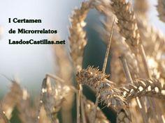 "I Certamen de MICRORRELATOS de ""LasdosCastillas.net"" | LasdosCastillas.net"