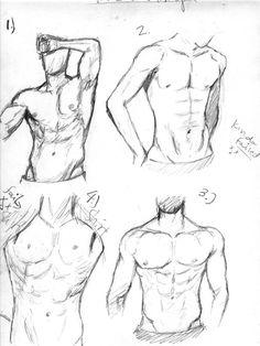 man body drawing - 736×982