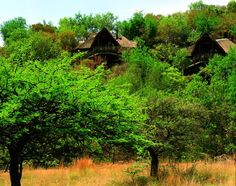 Tshukudu Bush Lodge is situated on a hill slope in the Pilanesberg Game Reserve this romantic hideout boasts great game viewing without even leaving the lodge. North West Province, Laundry Service, Game Reserve, 5 Star Hotels, Car Parking, Old Things, House Styles, Africa, Range