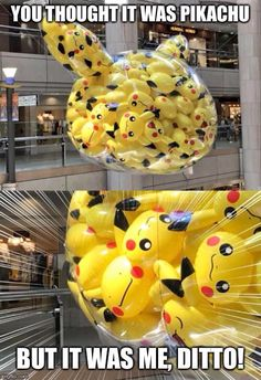 Photos That Will Make You Laugh When You Take a Closer Look Funny Images, Funny Pictures, 150 Pokemon, Pokemon Images, Stupid Funny Memes, Funny Humor, Hilarious, Jojo Memes, Geek Humor