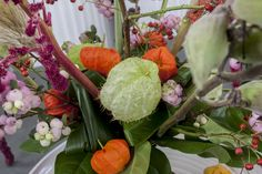 #physalis #Asclepia #MobyDick #Symphocarpus #MagicalPride #Amaranthus; Flowers are available at www.barendsen.nl