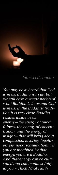 God In Us - Thich Nhat Hanh Buddhist Zen quotes by lotusseed.com.au