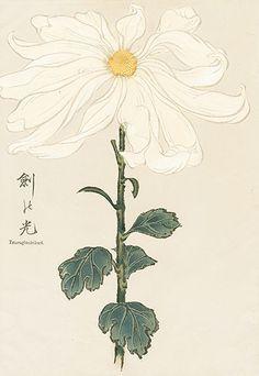 Keika Hasegawa: One Hundred Chrysanthemums, 1893.