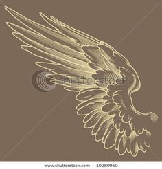 Find Detailed Wings stock images in HD and millions of other royalty-free stock photos, illustrations and vectors in the Shutterstock collection. Angel Wings Art, Owl Wings, Eagle Wings, Angel Art, Angle Wings Drawing, Angle Wing Tattoos, Wing Tattoo Arm, Tattoo No Peito, Wings Sketch