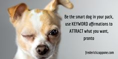 Be the smart dog in your pack, use KEYWORD affirmations to ATTRACT what you want, pronto