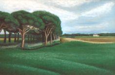 """Paesaggio toscano zona coltano """"PISA"""""""