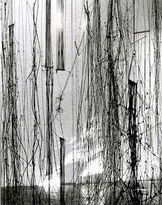 Chorros.  instalación en el Museo de Barquisimeto