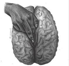 Mental stimulation.