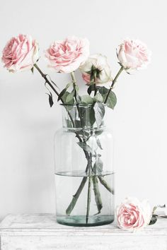 pink roses | photo by mildred | camille styles