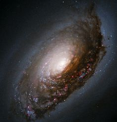 Blackeye Galaxy M64 - Hubble Space Telescope