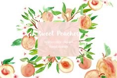 Peach. Watercolor clip art. by LABFcreations on @creativemarket