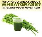 Wheat grass juice benefits: http://www.shoutitall.com/2012/11/wheat-grass-juice-benefits.html