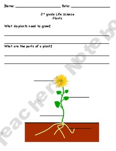 Science Journal Plant Page