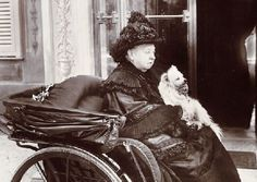 queen victoria and pomeranian | Queen Victoria's Animals and Pets Gallery- The Victorian Era ...