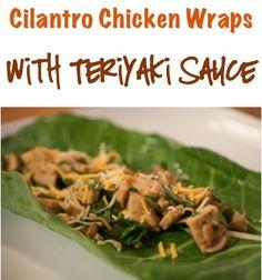 Cilantro Chicken Wraps Recipe with Teriyaki Sauce!