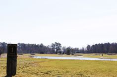 Bayside Golf #golf #resortgolf #clubgolf #beachgolf #golfcommunity