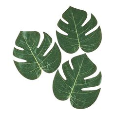 "We could make these bigger and cheaper...  $2.28 for 12 - 8"" Tropical Leaves - OrientalTrading.com"