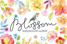 Watercolor Floral Clip Art by Anna Guz's Store on @creativemarket