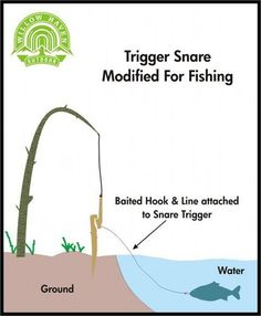 Trigger Snare Modified For Fishing. This would be hilarious! Fish flying everywhere. http://survivallife.xyz