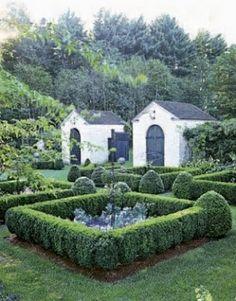 Boxwood hedges.