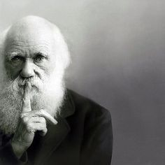 Charles Darwin.1809 - 1882, born in Shrewsbury. He was a Naturalist and Geologist. His book ' The Origin of Species' was published in 1859.
