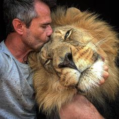 Beautiful Lion with someone who loves him. It's easy to see Mr Lion loves him too. Animals And Pets, Baby Animals, Funny Animals, Cute Animals, Wild Animals, Beautiful Cats, Animals Beautiful, Majestic Animals, Big Cats