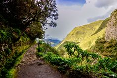 The wonderful levada Walk Trip at rabacal Madeira Island / Portugal - Landscape Captures   www.facebook.com/jasminasun