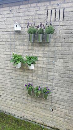 Draadscherm decoratie House Plants Decor, Plant Decor, Garden Deco, Plant Wall, Go Outside, Gardening Tips, Arcade, House Design, Flower Stores
