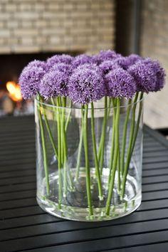 flores moradas.purple bouquet