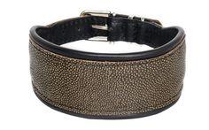 """Ein echter Hingucker ist das Halsband """"Manta"""" mit geprägtem Kalbsleder in Rochen-Optik. Breite ca. 5 cm."""