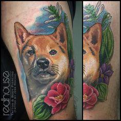 Shiba Inu portrait by Jess Rocha - RedHouse Tattoo & Body Piercing Buffalo NY