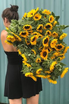This is what our August days look like. Hazy hot days full of harvesting armloads of sunflowers. These beauties are Vincent series. September Flowers, Flower Farm, Hot Days, Dahlia, Ontario, Harvest, Wedding Flowers, Bloom, Sunflowers