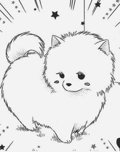 How to draw a pomeranian dog step by step. Drawing