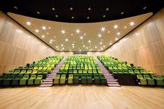 The Royal Children's Hospital, Auditorium - Melbourne Australia. Designed by Billard Leece Partnership and Bates Smart. Auditorium Design, Auditorium Architecture, Australian Interior Design, Interior Design Awards, Contemporary Interior Design, Hall Design, Theatre Design, Cinema Theatre, Innovation